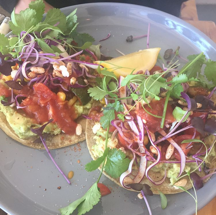 "Photo of Particle Cafe  by <a href=""/members/profile/Kittybiscuit"">Kittybiscuit</a> <br/>tacos <br/> October 9, 2016  - <a href='/contact/abuse/image/78983/180769'>Report</a>"