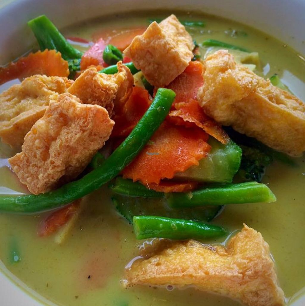 "Photo of Thai-tanic  by <a href=""/members/profile/CiaraSlevin"">CiaraSlevin</a> <br/>vegetable & tofu green Thai curry <br/> August 22, 2016  - <a href='/contact/abuse/image/79033/170623'>Report</a>"