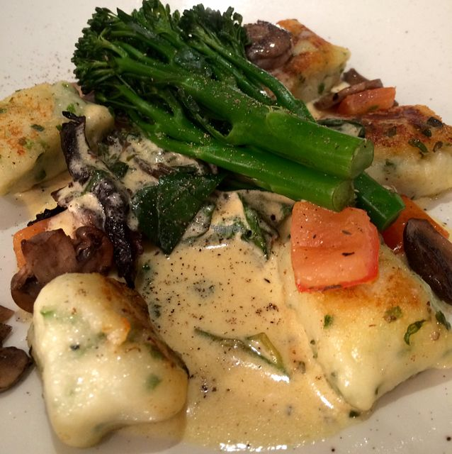 "Photo of Shed Bistro  by <a href=""/members/profile/CiaraSlevin"">CiaraSlevin</a> <br/>Herb gnocchi, mushrooms, chard, broccoli & herb cream <br/> October 1, 2016  - <a href='/contact/abuse/image/79093/178894'>Report</a>"