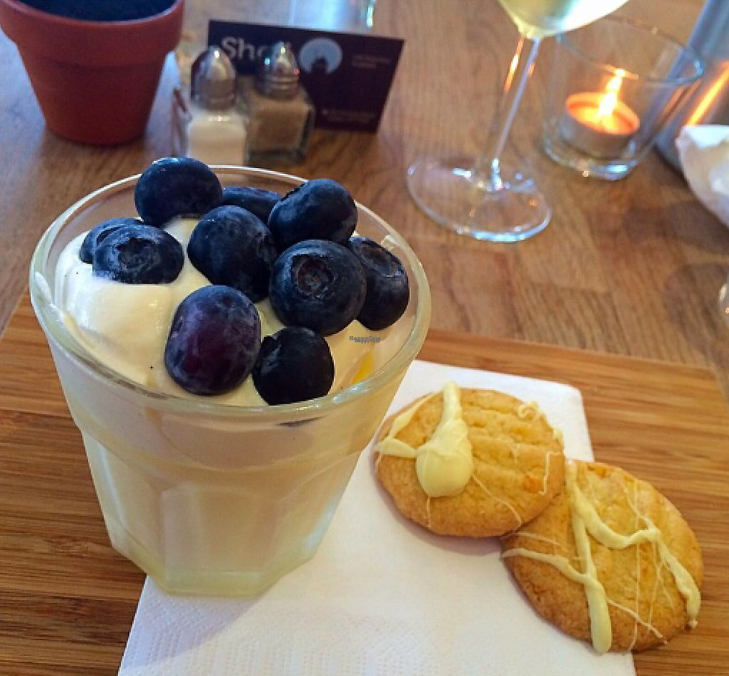 "Photo of Shed Bistro  by <a href=""/members/profile/CiaraSlevin"">CiaraSlevin</a> <br/>lemon & blueberry dessert  <br/> August 23, 2016  - <a href='/contact/abuse/image/79093/240470'>Report</a>"