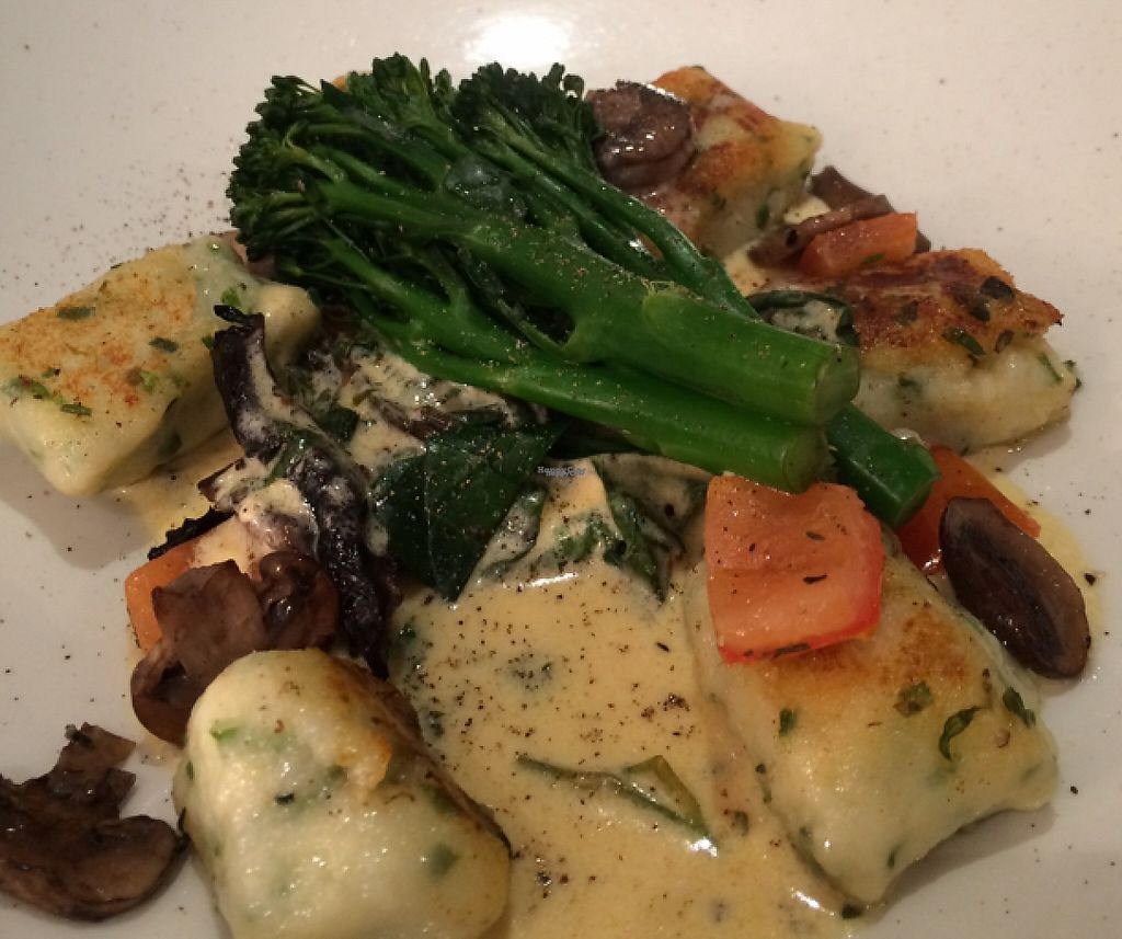 "Photo of Shed Bistro  by <a href=""/members/profile/CiaraSlevin"">CiaraSlevin</a> <br/>Herb gnocchi, mushrooms, chard, broccoli & herb cream <br/> October 1, 2016  - <a href='/contact/abuse/image/79093/240477'>Report</a>"