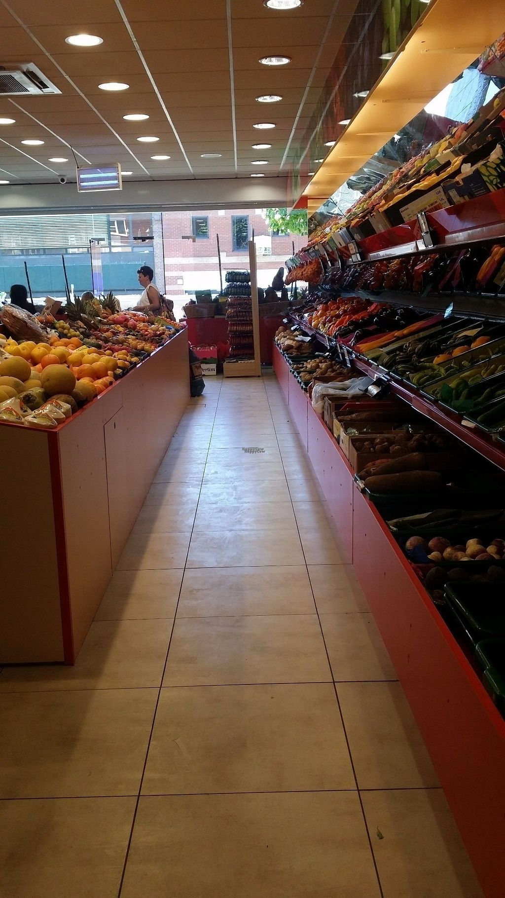 """Photo of CLOSED: Fruit Garden  by <a href=""""/members/profile/roguesby"""">roguesby</a> <br/>Tons of fruit and veg! <br/> August 26, 2016  - <a href='/contact/abuse/image/79138/171518'>Report</a>"""