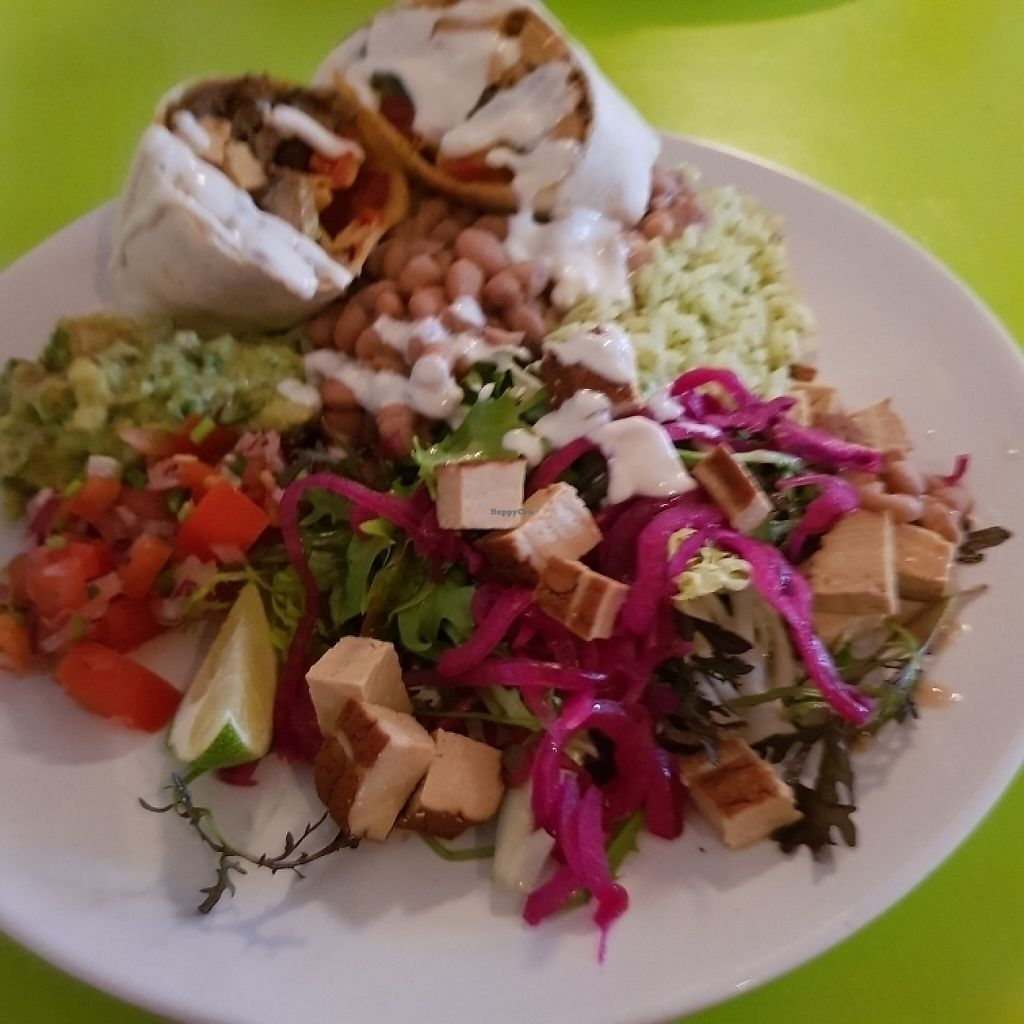 """Photo of Coco Loco  by <a href=""""/members/profile/Sassyvegan"""">Sassyvegan</a> <br/>Burrito with tofu and vegan sour cream <br/> May 27, 2017  - <a href='/contact/abuse/image/79240/263097'>Report</a>"""