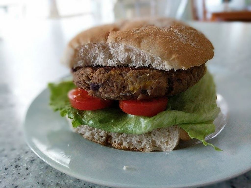 "Photo of Enjoy Vegan Food  by <a href=""/members/profile/community"">community</a> <br/>burger <br/> May 25, 2017  - <a href='/contact/abuse/image/79377/262431'>Report</a>"