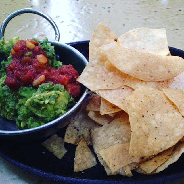 "Photo of CLOSED: Madre + Mason  by <a href=""/members/profile/calamaestra"">calamaestra</a> <br/>chips and salsa/guacamole  <br/> August 29, 2016  - <a href='/contact/abuse/image/79383/172221'>Report</a>"