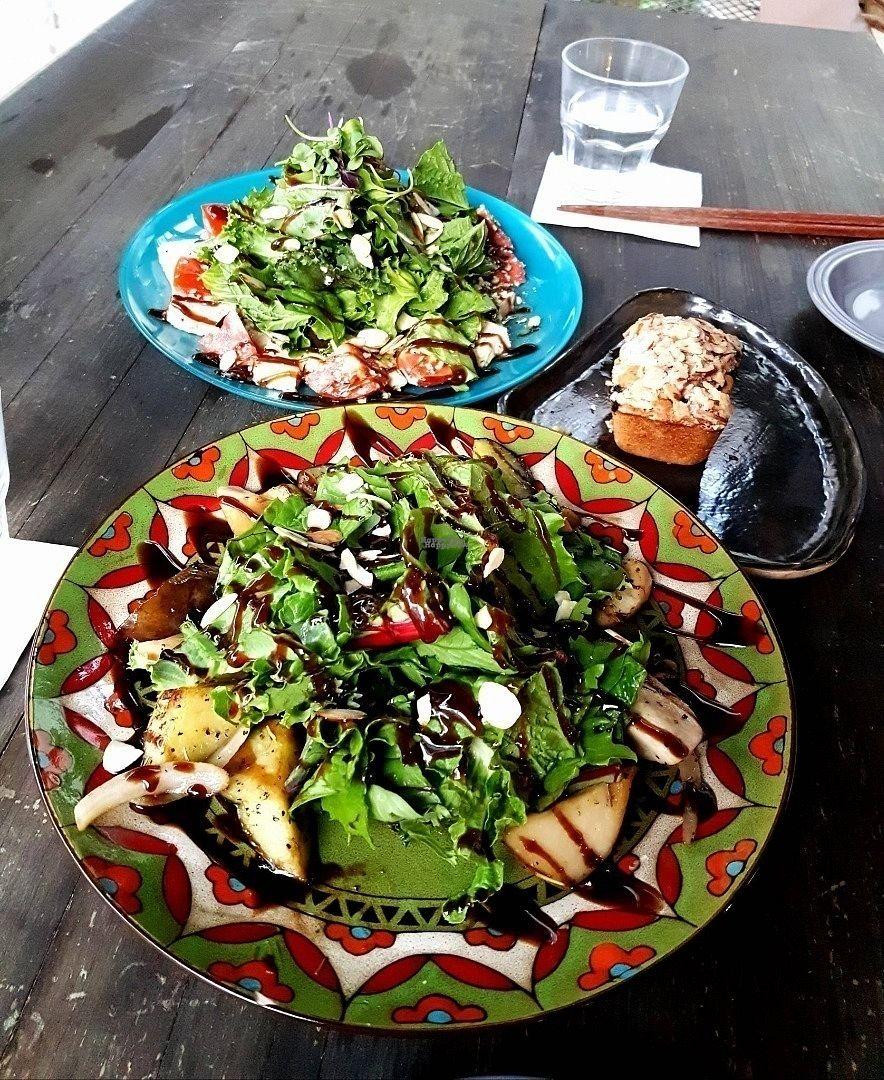 "Photo of Slunch Factory - 슬런치 팩토리  by <a href=""/members/profile/natalik"">natalik</a> <br/>Eggplant Mushroom Salad & Tomato Tofu Salad <br/> September 30, 2016  - <a href='/contact/abuse/image/79405/178628'>Report</a>"