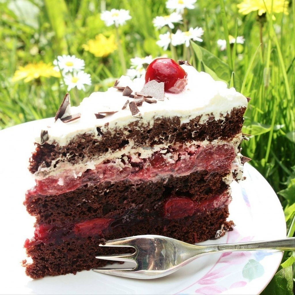 """Photo of Elfengaststube  by <a href=""""/members/profile/community"""">community</a> <br/>vegan black forest cake  <br/> September 9, 2016  - <a href='/contact/abuse/image/79434/174447'>Report</a>"""