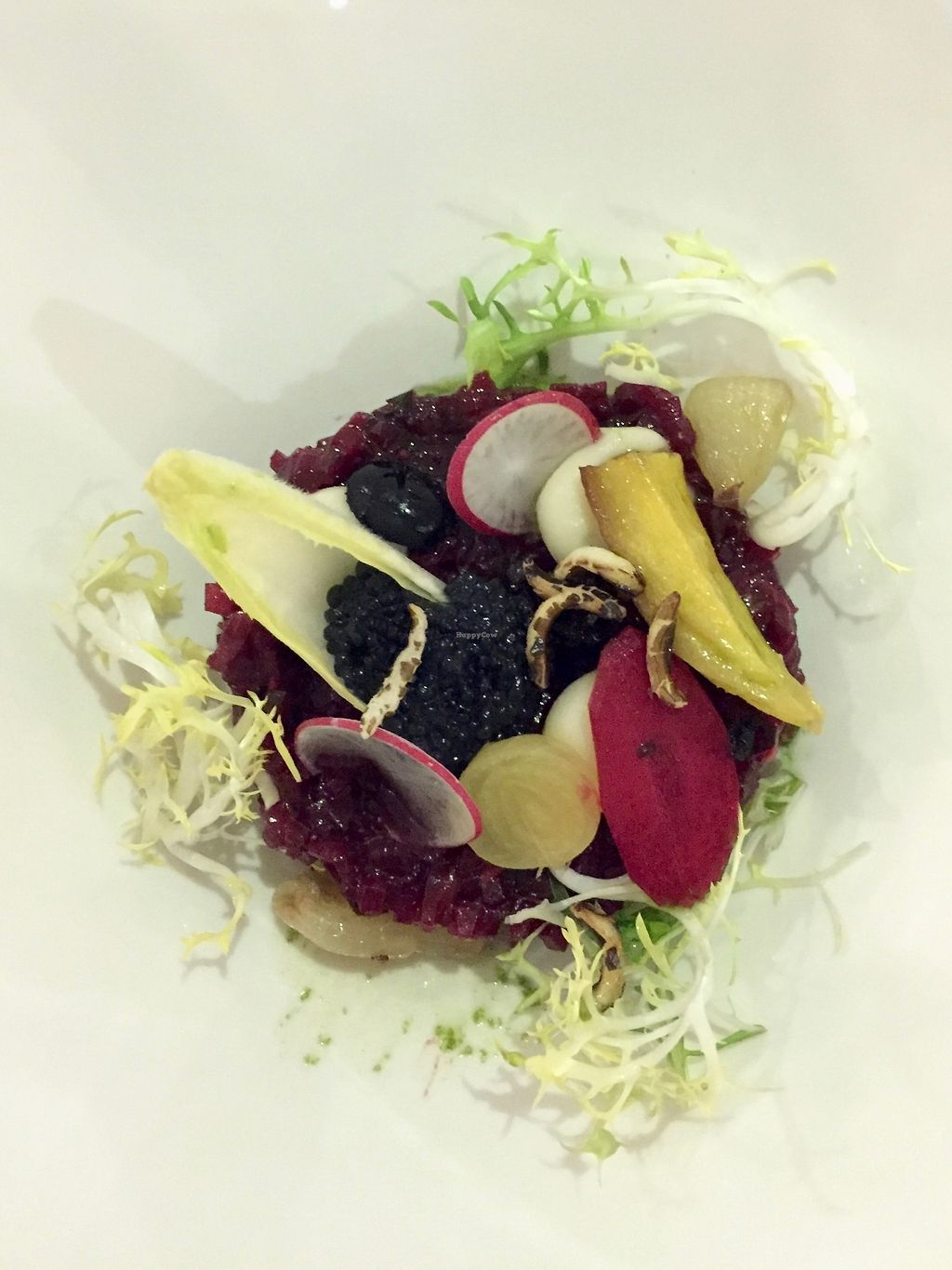 "Photo of Bij Albrecht  by <a href=""/members/profile/nitahannele"">nitahannele</a> <br/>1st course - raw beetroot salad with vegan caviar & wasabi sauce <br/> January 18, 2018  - <a href='/contact/abuse/image/79441/347922'>Report</a>"