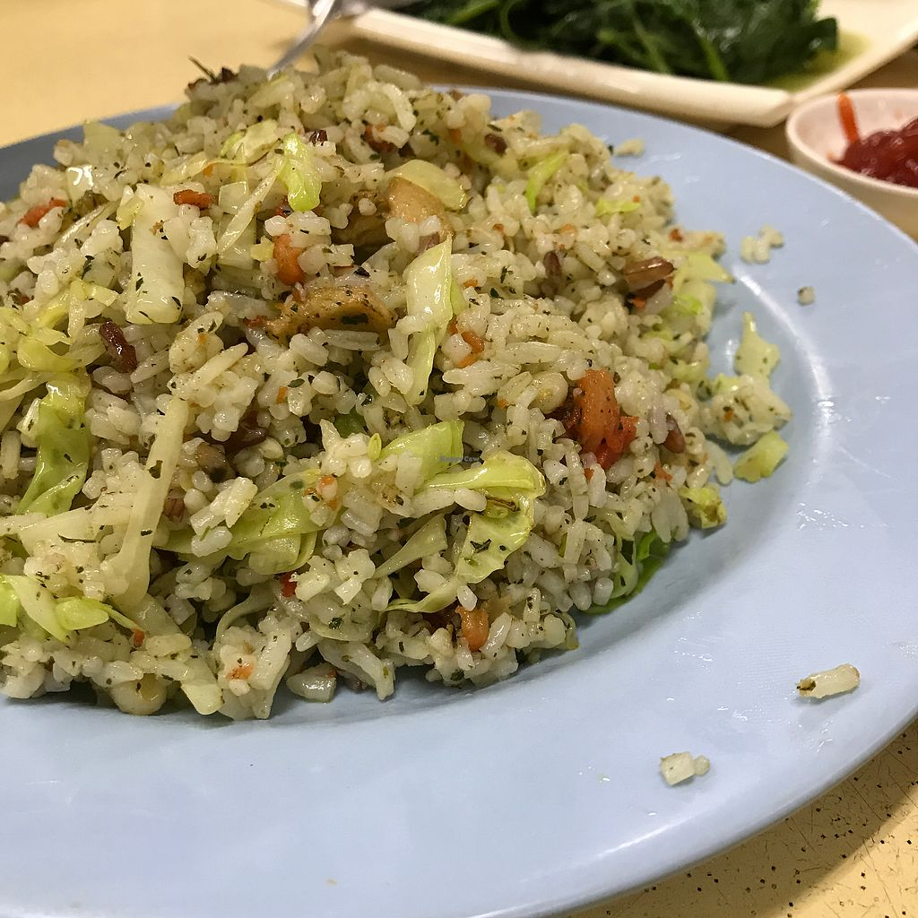 """Photo of Green Lane Vegetarian Food  by <a href=""""/members/profile/Sweetveganneko"""">Sweetveganneko</a> <br/>Yang chow fried rice <br/> February 8, 2018  - <a href='/contact/abuse/image/79480/356330'>Report</a>"""