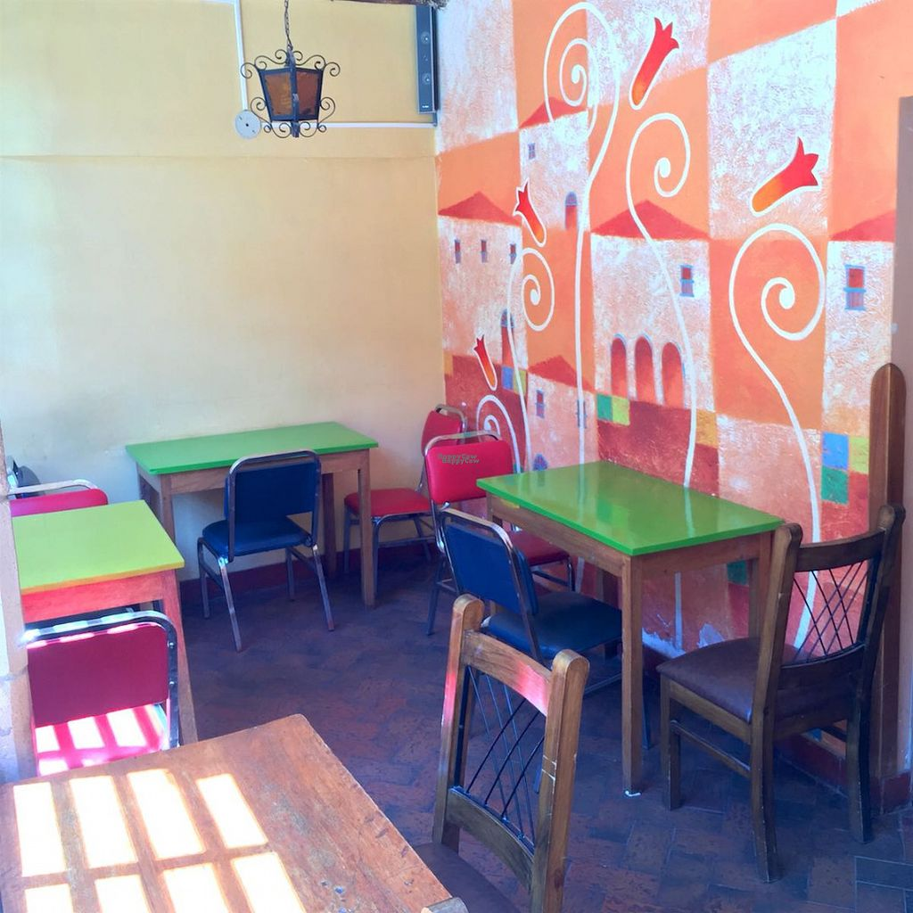 """Photo of Salud De Luz  by <a href=""""/members/profile/earthville"""">earthville</a> <br/>Dining room <br/> September 13, 2016  - <a href='/contact/abuse/image/79538/175485'>Report</a>"""