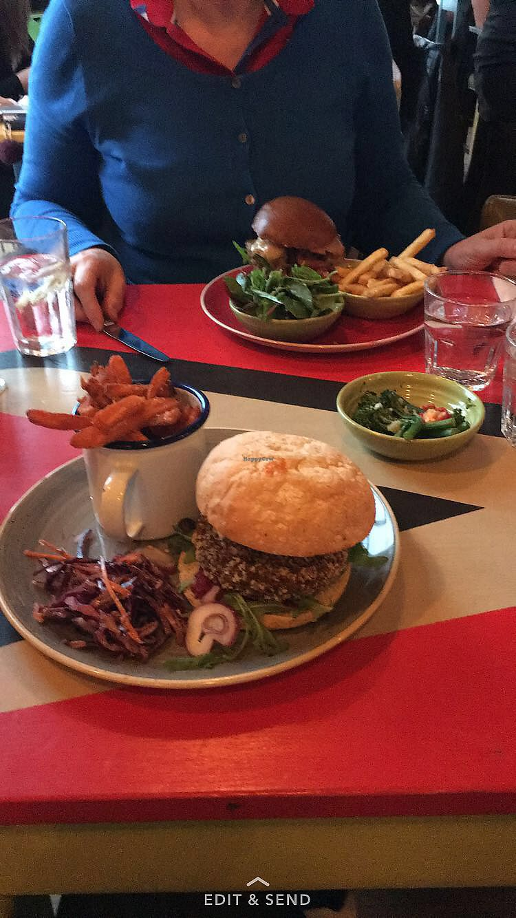 "Photo of Zinco Lounge  by <a href=""/members/profile/RachelJenkins"">RachelJenkins</a> <br/>Sweet potato falafel burger  <br/> January 29, 2018  - <a href='/contact/abuse/image/79600/352394'>Report</a>"