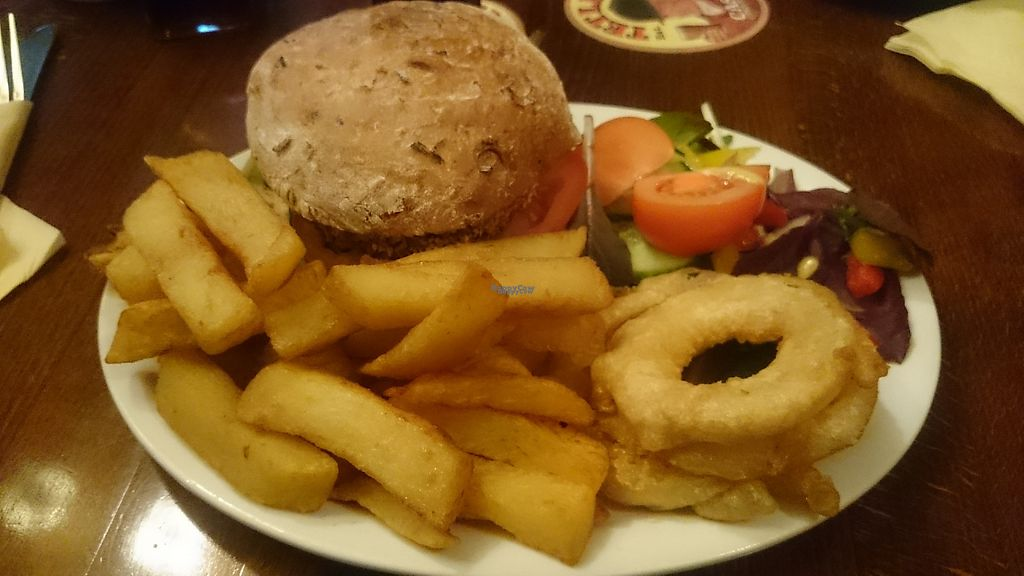 """Photo of REMOVED: The Buck Inn  by <a href=""""/members/profile/Schulie"""">Schulie</a> <br/>Veggie burger (vegans omit mayo), chips and onion rings <br/> December 18, 2016  - <a href='/contact/abuse/image/79610/202570'>Report</a>"""
