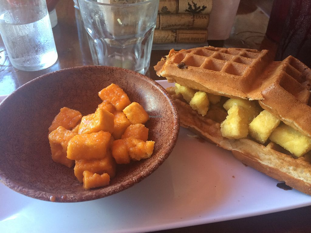 """Photo of CLOSED: Magnolia's  by <a href=""""/members/profile/meggieg"""">meggieg</a> <br/>buffalo tofu chips and breakfast tofu waffle sandwich! <br/> July 15, 2017  - <a href='/contact/abuse/image/79621/280683'>Report</a>"""