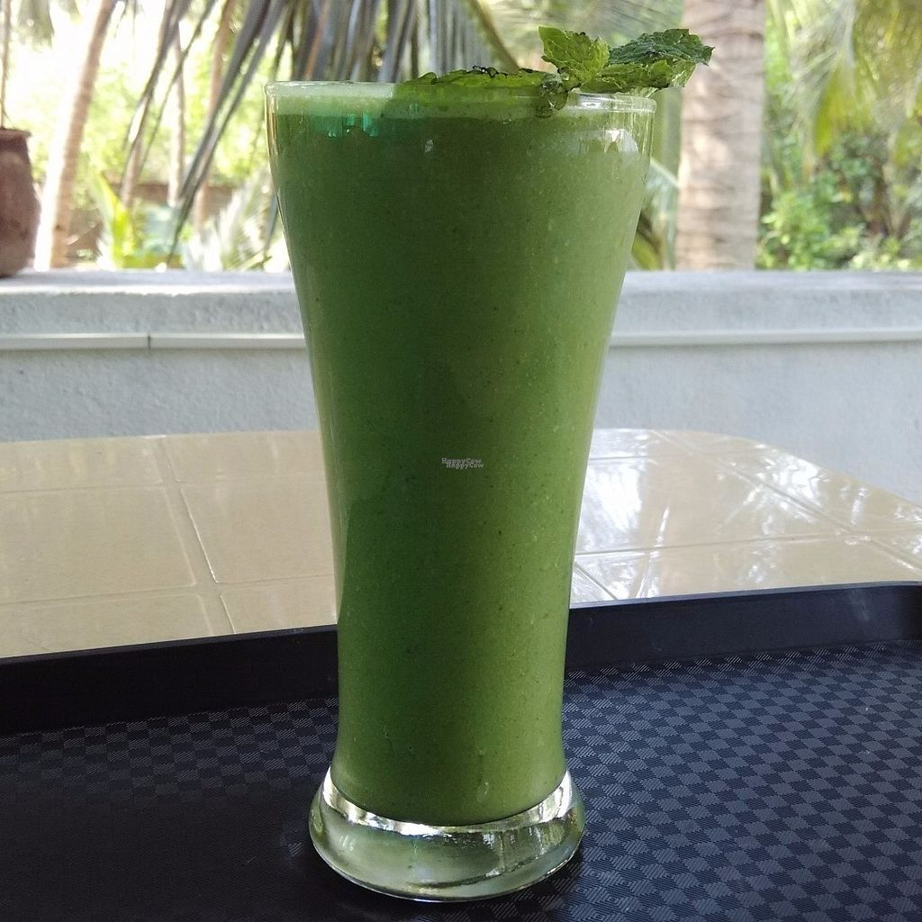 "Photo of Veganza Cafe  by <a href=""/members/profile/IshanShekhawat"">IshanShekhawat</a> <br/>Green Smoothie with almond milk <br/> September 26, 2016  - <a href='/contact/abuse/image/79656/178001'>Report</a>"