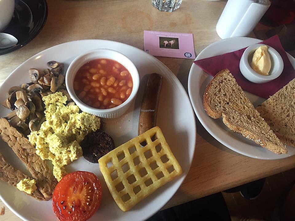 "Photo of Kat's Kitchen  by <a href=""/members/profile/DeborahWicks"">DeborahWicks</a> <br/>vegan breakfast <br/> July 31, 2017  - <a href='/contact/abuse/image/79734/286879'>Report</a>"