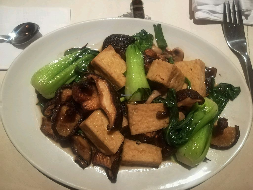 "Photo of Wok - Cedritos  by <a href=""/members/profile/DanielaForero"">DanielaForero</a> <br/>stir fry de setas  <br/> February 16, 2018  - <a href='/contact/abuse/image/79784/359971'>Report</a>"