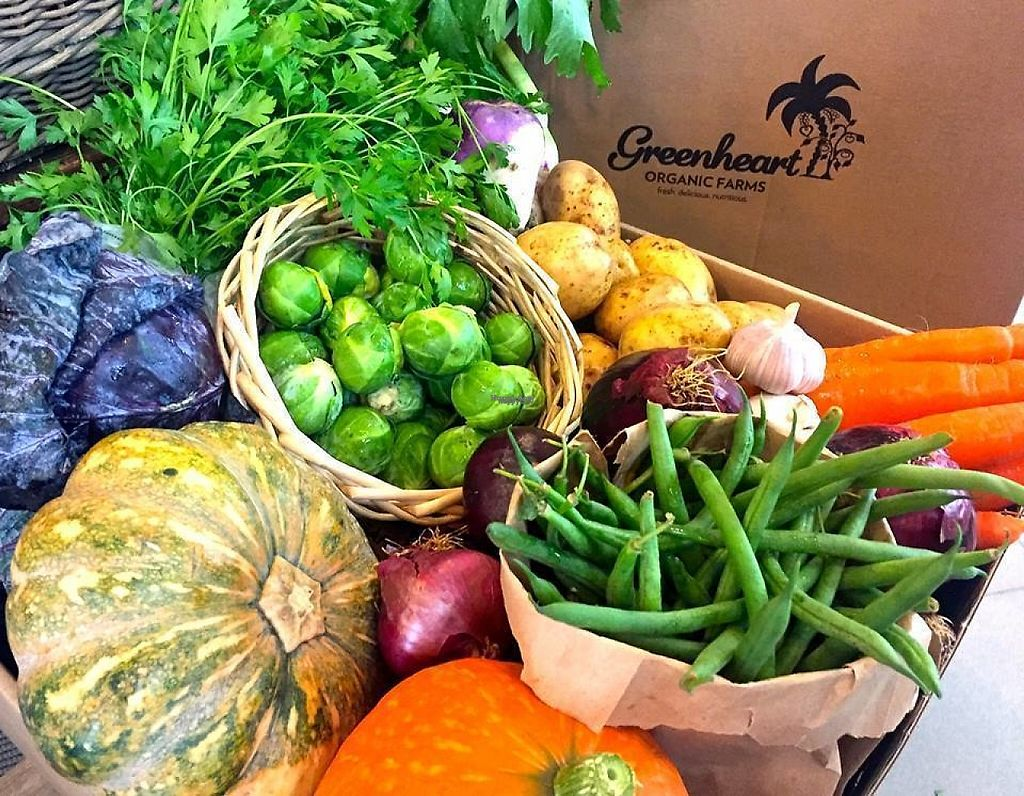 """Photo of Greenheart Organic Farms  by <a href=""""/members/profile/community"""">community</a> <br/>Greenheart Organic Farms <br/> March 9, 2017  - <a href='/contact/abuse/image/79813/234386'>Report</a>"""