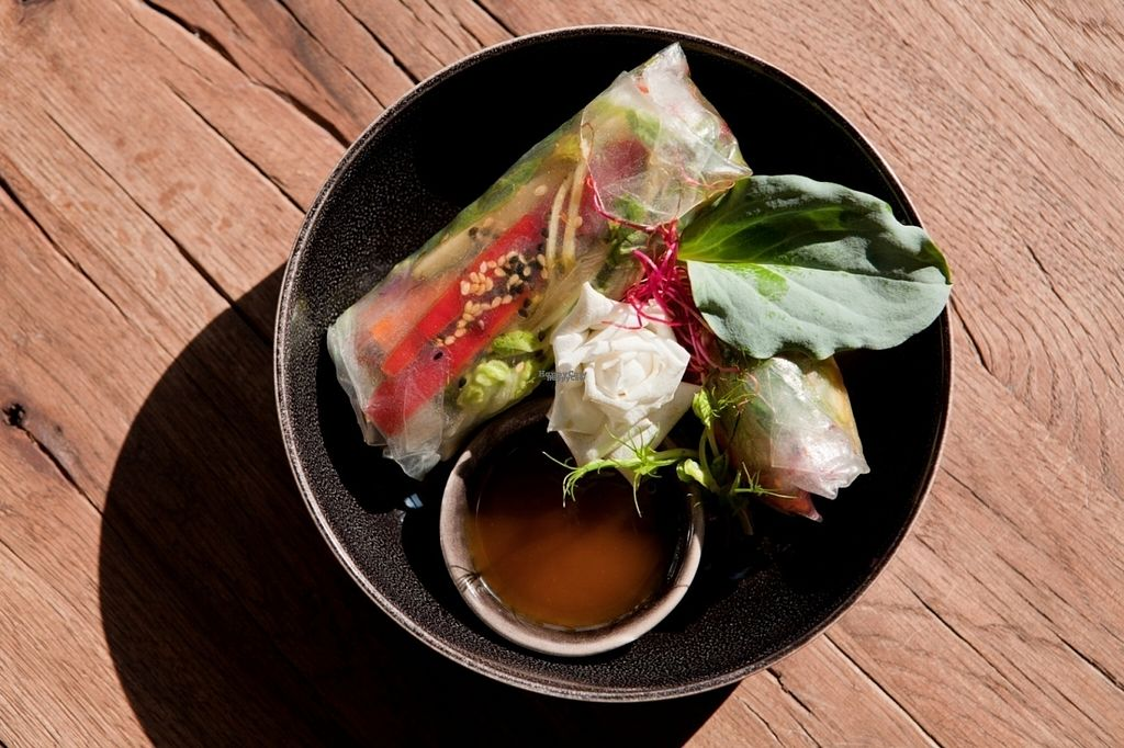 "Photo of CLOSED: Cafe Sage  by <a href=""/members/profile/NormanSeeger"">NormanSeeger</a> <br/>Rice paper rolls with seasonal veggies, green herbs, and sesame <br/> September 12, 2016  - <a href='/contact/abuse/image/79968/175327'>Report</a>"