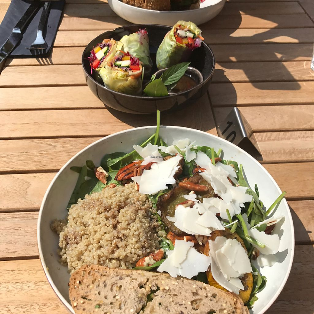 "Photo of CLOSED: Cafe Sage  by <a href=""/members/profile/MonaLemp"">MonaLemp</a> <br/>large veggie bowl salad with goat cheese, rice paper wrap and veggie burger in the back <br/> May 7, 2017  - <a href='/contact/abuse/image/79968/256664'>Report</a>"