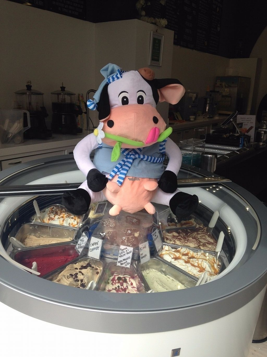 "Photo of MammaMia Gelaterie  by <a href=""/members/profile/CristinaRizzioli"">CristinaRizzioli</a> <br/>HAPPY COW ALSO IN ROME