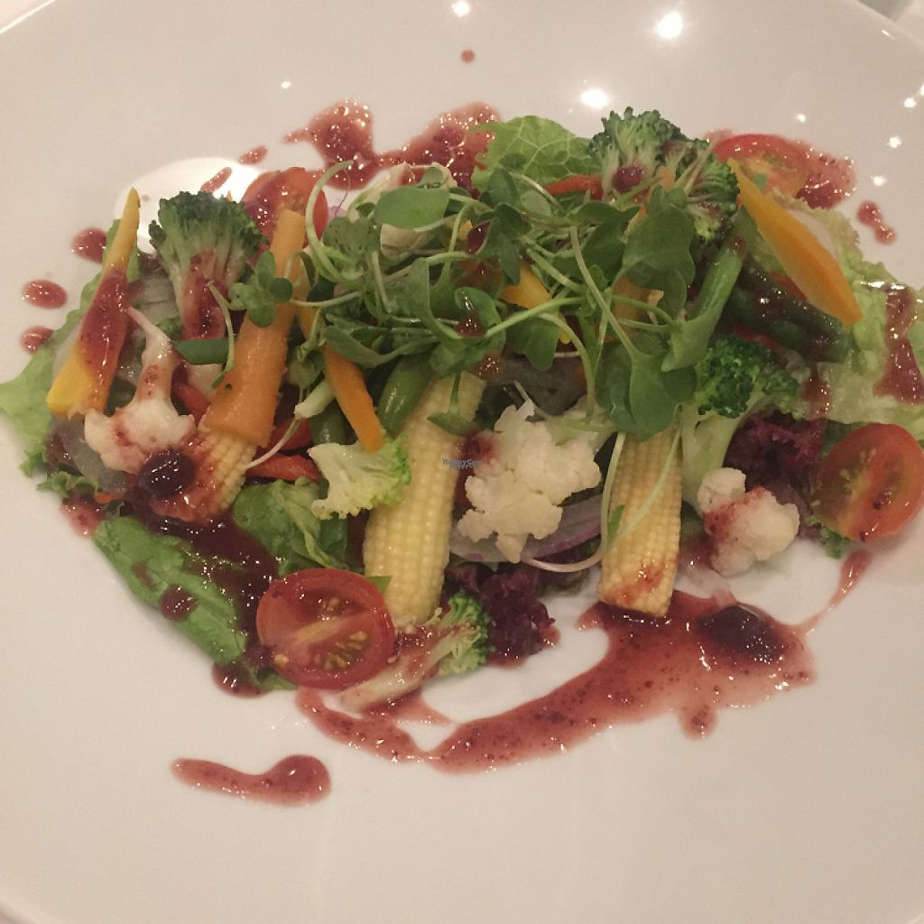 """Photo of Hawa - Tambo del Inka  by <a href=""""/members/profile/Lozcriston"""">Lozcriston</a> <br/>Salad with berry dressing  <br/> March 21, 2017  - <a href='/contact/abuse/image/80135/239287'>Report</a>"""