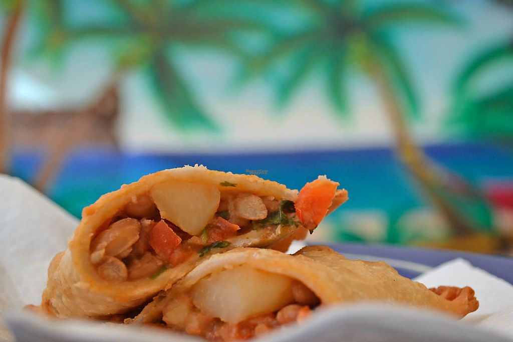 """Photo of Pilar Caribbean  by <a href=""""/members/profile/American%20Vegan"""">American Vegan</a> <br/>vegan pastelillo & the palms mural <br/> November 21, 2016  - <a href='/contact/abuse/image/80290/192809'>Report</a>"""