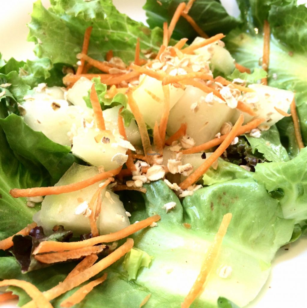 """Photo of Goa  by <a href=""""/members/profile/Isis%20Galvao"""">Isis Galvao</a> <br/>Salad with carrot, lettuce, melon and oat <br/> January 31, 2016  - <a href='/contact/abuse/image/8043/134485'>Report</a>"""