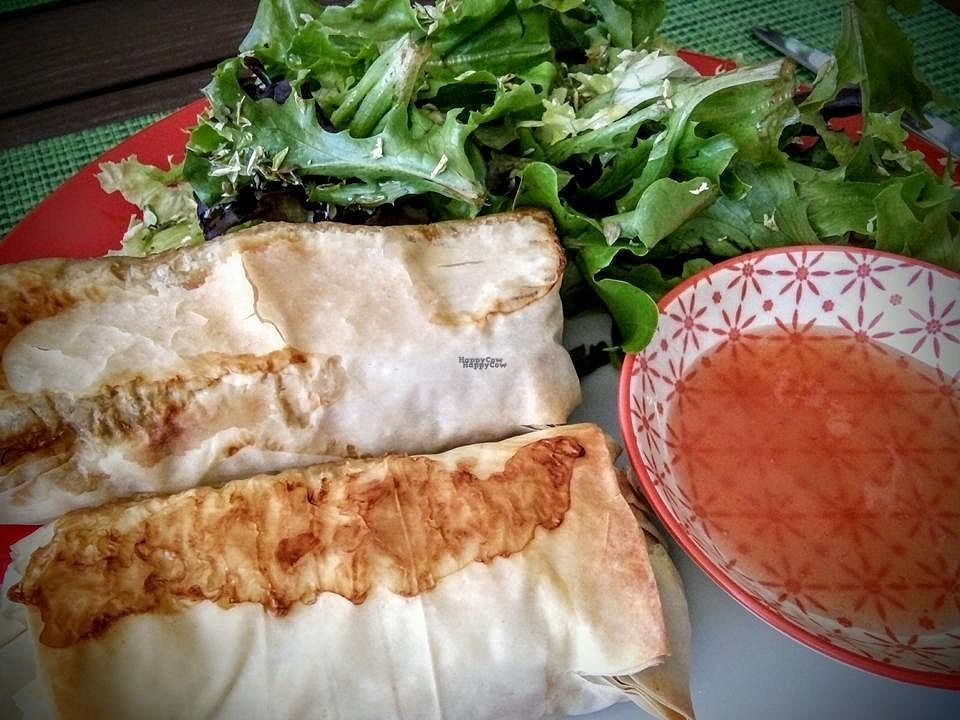 """Photo of CLOSED: Flor das Laranjeiras by Algarve Gardens  by <a href=""""/members/profile/Beanna"""">Beanna</a> <br/>Vegan Spring Rolls (Crepes Chines) with broccoli and cauliflower <br/> October 4, 2016  - <a href='/contact/abuse/image/80540/179689'>Report</a>"""