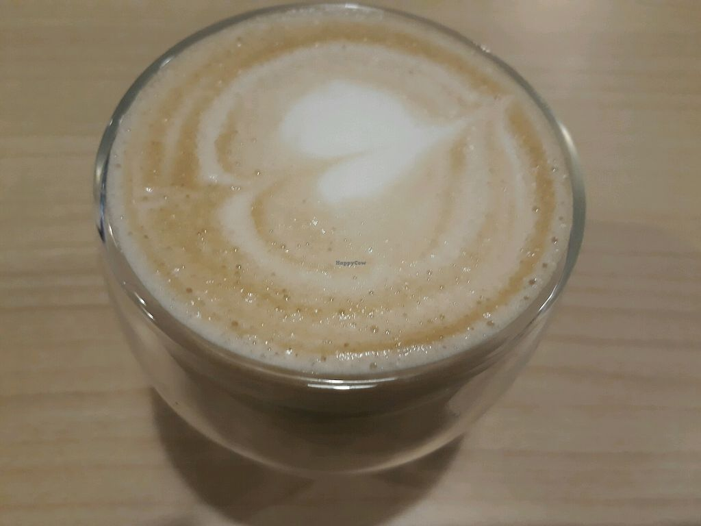 "Photo of Veggielicious Cafe  by <a href=""/members/profile/LilacHippy"">LilacHippy</a> <br/>Soy milk latte <br/> October 24, 2017  - <a href='/contact/abuse/image/80636/318534'>Report</a>"