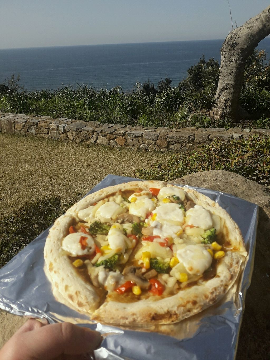 """Photo of Cafe Earth  by <a href=""""/members/profile/DublinVegan1986"""">DublinVegan1986</a> <br/>vegan pizza by the sea <br/> March 31, 2018  - <a href='/contact/abuse/image/80686/378632'>Report</a>"""