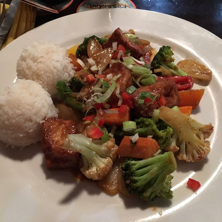 """Photo of Poseidon Restaurant  by <a href=""""/members/profile/LeoAngulo"""">LeoAngulo</a> <br/>Curry with tofu <br/> October 11, 2016  - <a href='/contact/abuse/image/80759/181493'>Report</a>"""