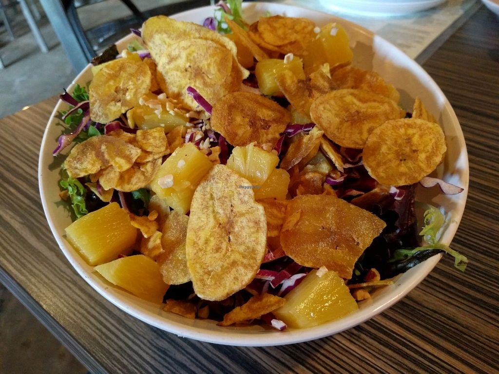 """Photo of Gourmet Pizza Company  by <a href=""""/members/profile/Sonja%20and%20Dirk"""">Sonja and Dirk</a> <br/>Thai ginger salad <br/> June 3, 2016  - <a href='/contact/abuse/image/8076/151990'>Report</a>"""