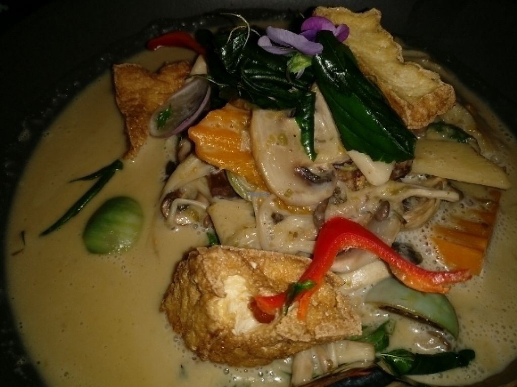 """Photo of Holy Basil Thai  by <a href=""""/members/profile/Aloo"""">Aloo</a> <br/>green curry <br/> February 22, 2017  - <a href='/contact/abuse/image/80844/229068'>Report</a>"""