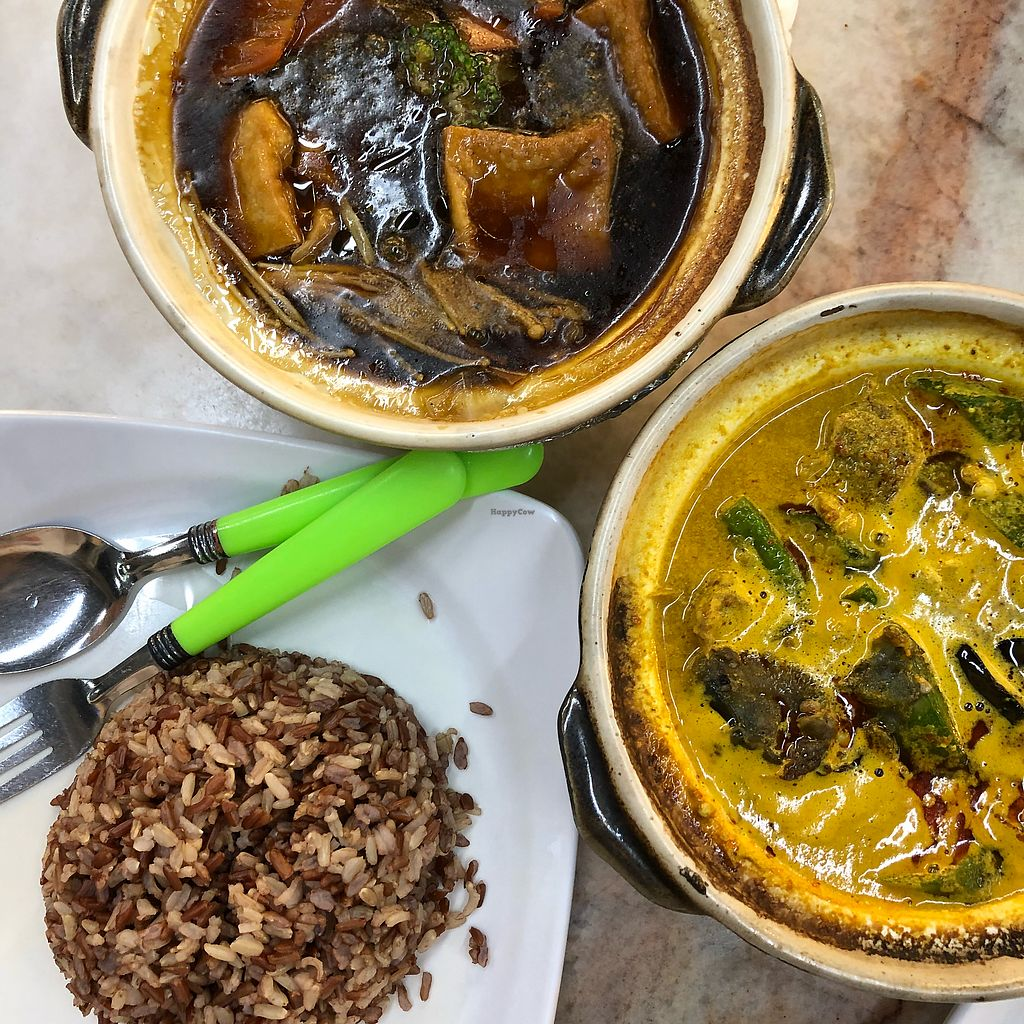"""Photo of Fortune Tree Vegetarian  by <a href=""""/members/profile/Cheryldarestotravel"""">Cheryldarestotravel</a> <br/>Brown rice with vegetarian curry mutton ($4.50) and claypot tofu ($4.50) <br/> February 4, 2018  - <a href='/contact/abuse/image/80849/355069'>Report</a>"""
