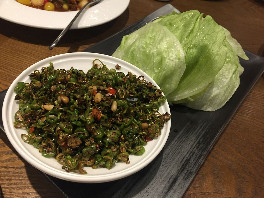 """Photo of Vegelife  by <a href=""""/members/profile/PrashantGala"""">PrashantGala</a> <br/>Lettuce Leaves with chopped vege salad ? <br/> April 25, 2017  - <a href='/contact/abuse/image/80947/252263'>Report</a>"""