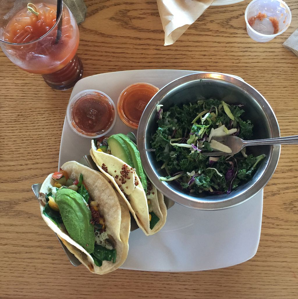 "Photo of Jewel's Bakery and Cafe  by <a href=""/members/profile/Stephanie3366"">Stephanie3366</a> <br/>veggie tacos, vegan slaw <br/> December 19, 2016  - <a href='/contact/abuse/image/81028/203073'>Report</a>"