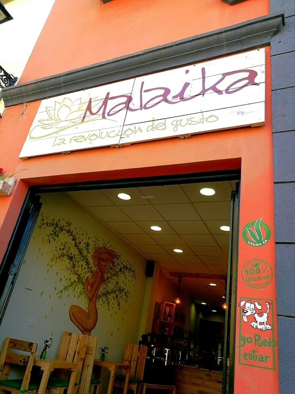 """Photo of Malaika  by <a href=""""/members/profile/mrmaxbailey"""">mrmaxbailey</a> <br/>Great place!  <br/> May 11, 2017  - <a href='/contact/abuse/image/81056/257931'>Report</a>"""