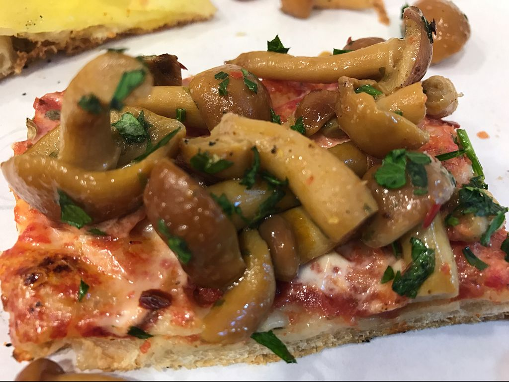 """Photo of Pizza Dai Cinque  by <a href=""""/members/profile/Forman"""">Forman</a> <br/>mushroom pizza <br/> October 7, 2016  - <a href='/contact/abuse/image/81109/180408'>Report</a>"""