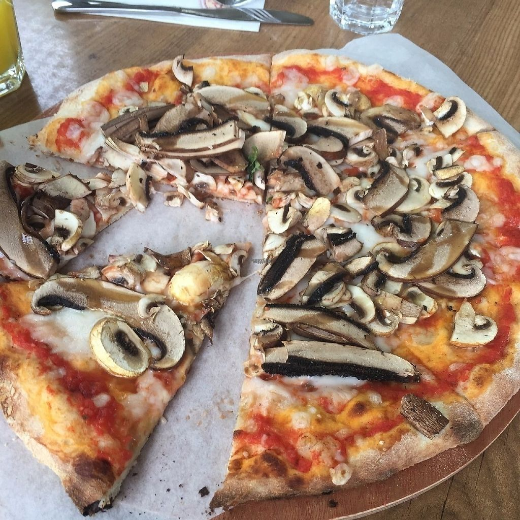 "Photo of Cookia  by <a href=""/members/profile/maorblu"">maorblu</a> <br/>Vegan mushroom pizza <br/> April 11, 2017  - <a href='/contact/abuse/image/81143/246982'>Report</a>"