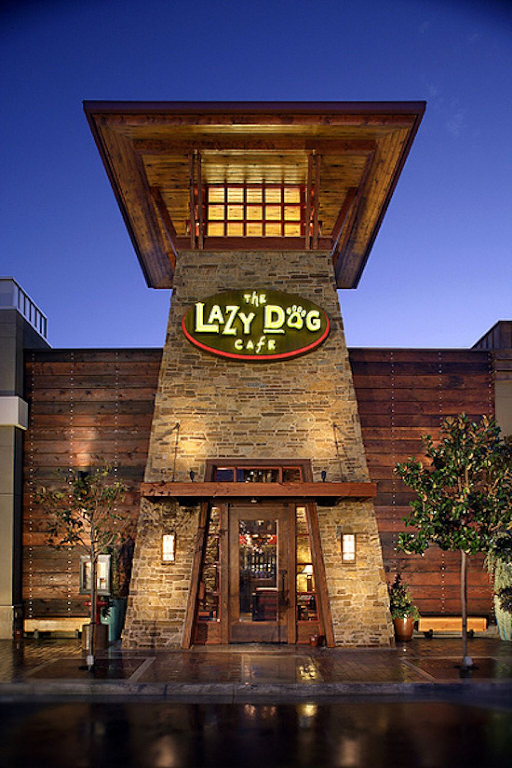 """Photo of Lazy Dog  by <a href=""""/members/profile/community4"""">community4</a> <br/>Lazy Dog  <br/> March 12, 2017  - <a href='/contact/abuse/image/81190/235583'>Report</a>"""