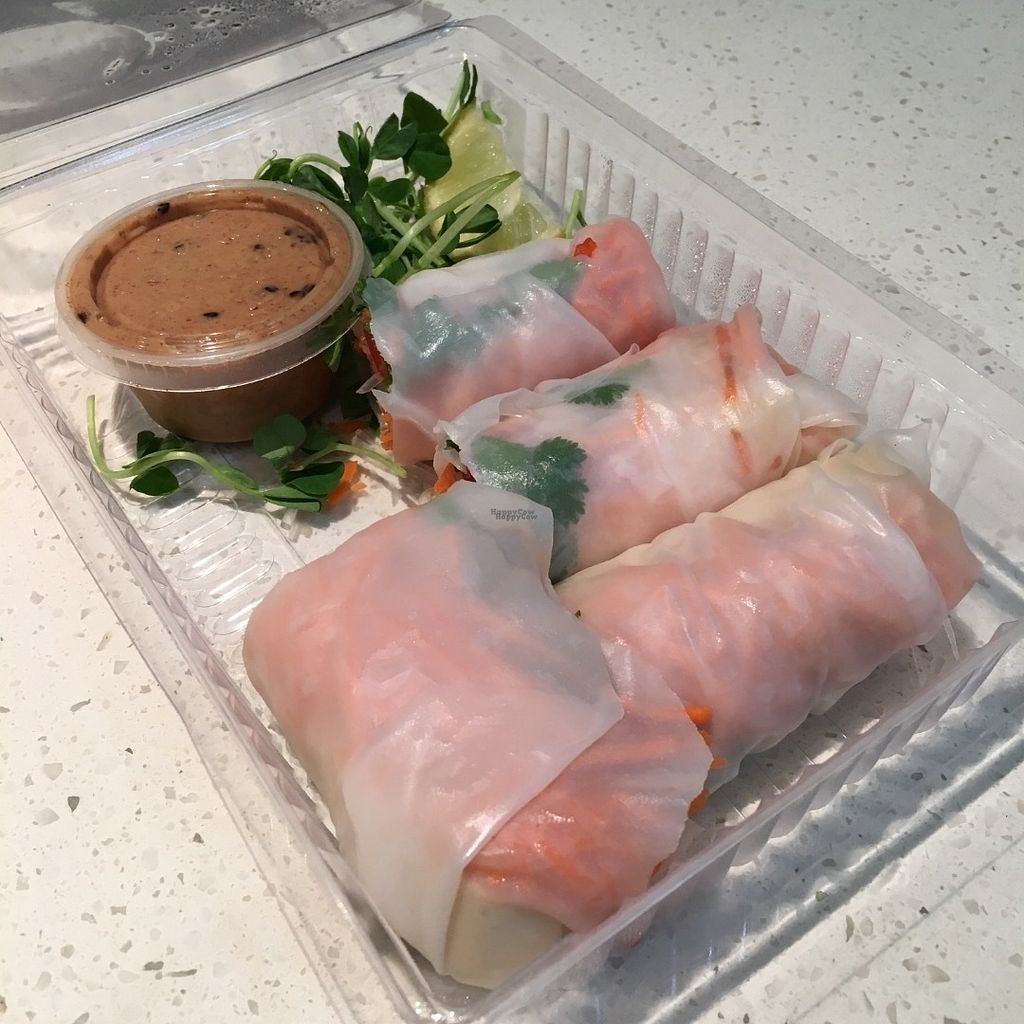 """Photo of The Juice Truck Cafe - Mount Pleasant  by <a href=""""/members/profile/vegan%20frog"""">vegan frog</a> <br/>Spring rolls <br/> October 9, 2016  - <a href='/contact/abuse/image/81194/180885'>Report</a>"""