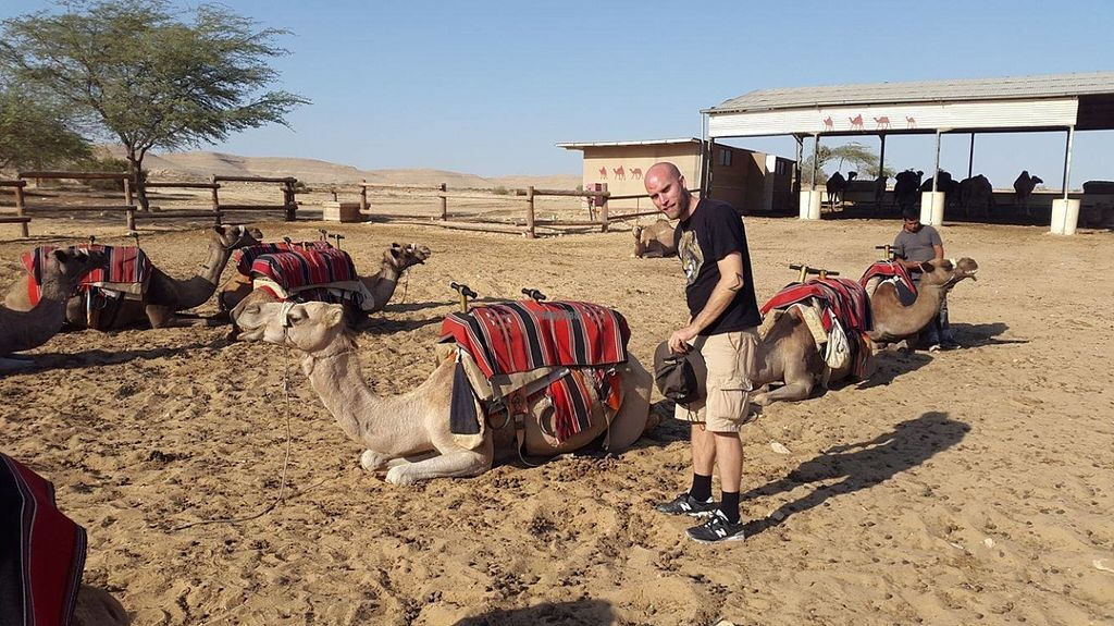 "Photo of Negev Camel Ranch  by <a href=""/members/profile/kristoferaberg"">kristoferaberg</a> <br/>Checking out the camels in the evening <br/> October 23, 2016  - <a href='/contact/abuse/image/81253/183972'>Report</a>"