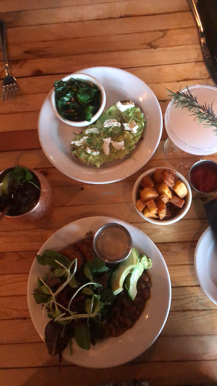 "Photo of The Beer Plant  by <a href=""/members/profile/ArielRoberson"">ArielRoberson</a> <br/>Farmers bowl, avacado toast, and fries <br/> January 2, 2018  - <a href='/contact/abuse/image/81287/342166'>Report</a>"
