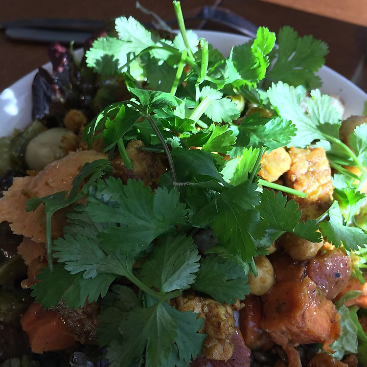 """Photo of SLA  by <a href=""""/members/profile/Lampky"""">Lampky</a> <br/>vegan nourish bowl <br/> October 30, 2017  - <a href='/contact/abuse/image/81300/320210'>Report</a>"""