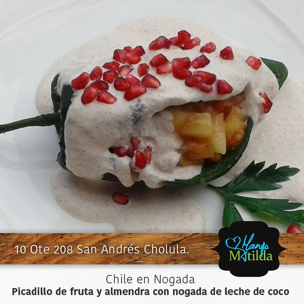 """Photo of Mango Matilda  by <a href=""""/members/profile/V%C3%ADctorAvi%C3%B1a"""">VíctorAviña</a> <br/>Chile en notada <br/> January 13, 2017  - <a href='/contact/abuse/image/81342/211732'>Report</a>"""