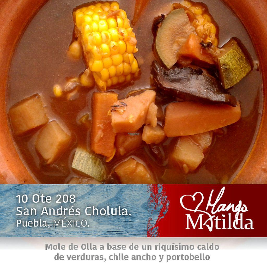 "Photo of Mango Matilda  by <a href=""/members/profile/V%C3%ADctorAvi%C3%B1a"">VíctorAviña</a> <br/>Mole de Olla <br/> January 13, 2017  - <a href='/contact/abuse/image/81342/211737'>Report</a>"