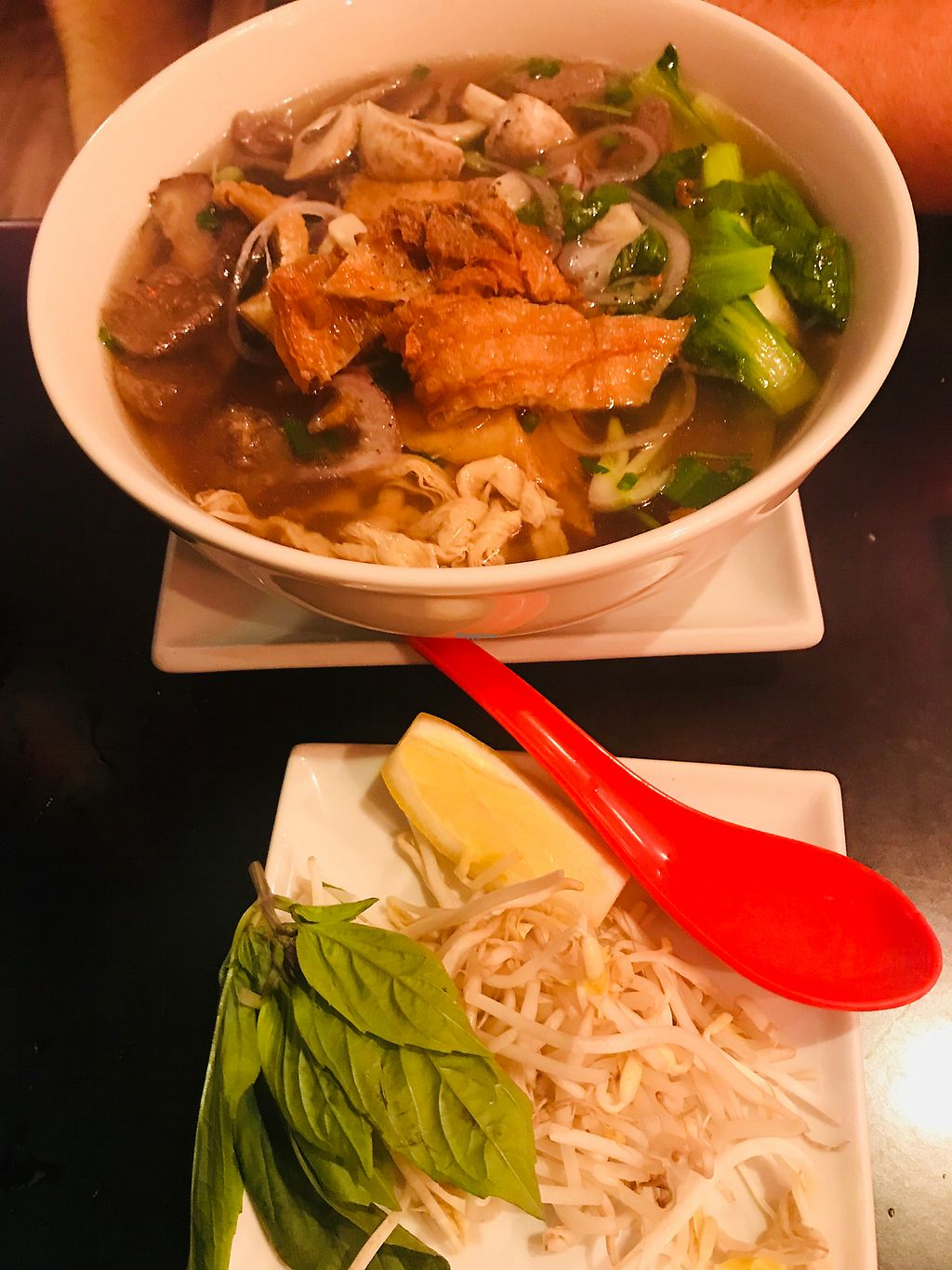 "Photo of Red Lotus Vietnamese Chargrill  by <a href=""/members/profile/NirvanaRoseWilliams"">NirvanaRoseWilliams</a> <br/>Special Vegan Pho <br/> October 22, 2017  - <a href='/contact/abuse/image/81349/317644'>Report</a>"