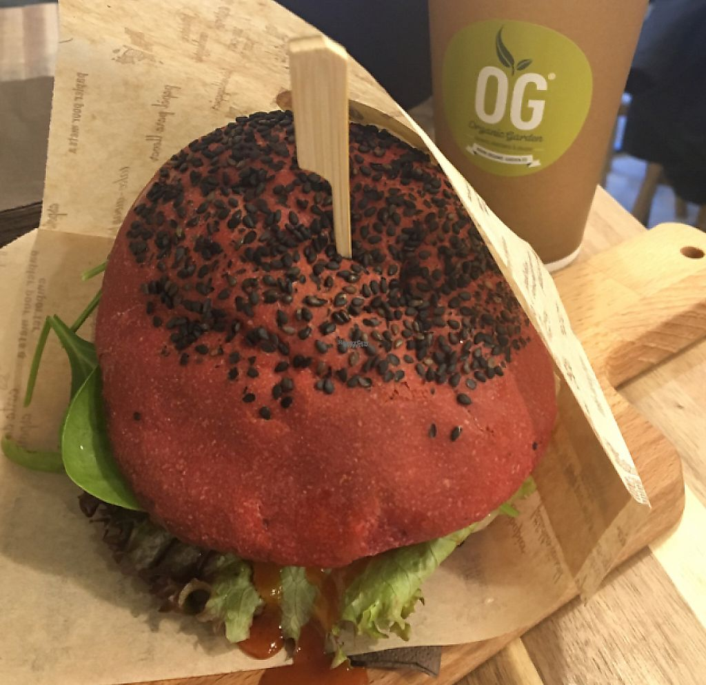 "Photo of CLOSED: Organic Garden - Ciril-Metodov  by <a href=""/members/profile/SophieFrenchy"">SophieFrenchy</a> <br/>vegan burger with mushrooms  <br/> December 9, 2016  - <a href='/contact/abuse/image/81453/243788'>Report</a>"