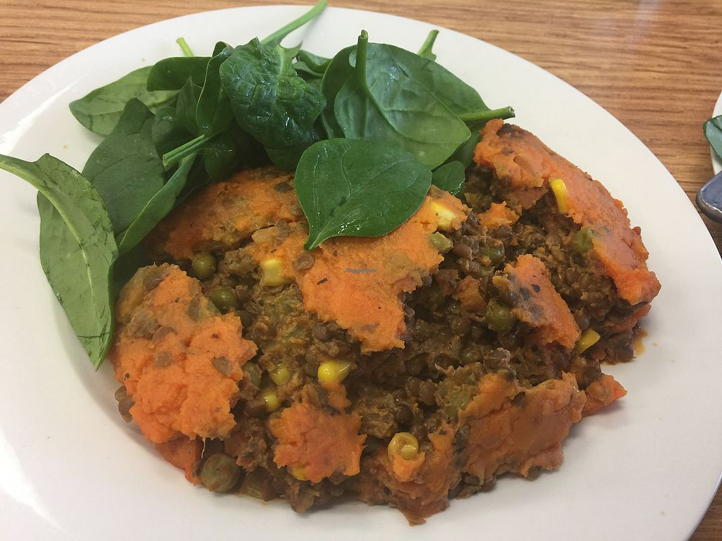 "Photo of CLOSED: Peace Love Vegan Cafe  by <a href=""/members/profile/Tiggy"">Tiggy</a> <br/>Vegan shepherd's pie <br/> June 24, 2017  - <a href='/contact/abuse/image/81466/272770'>Report</a>"