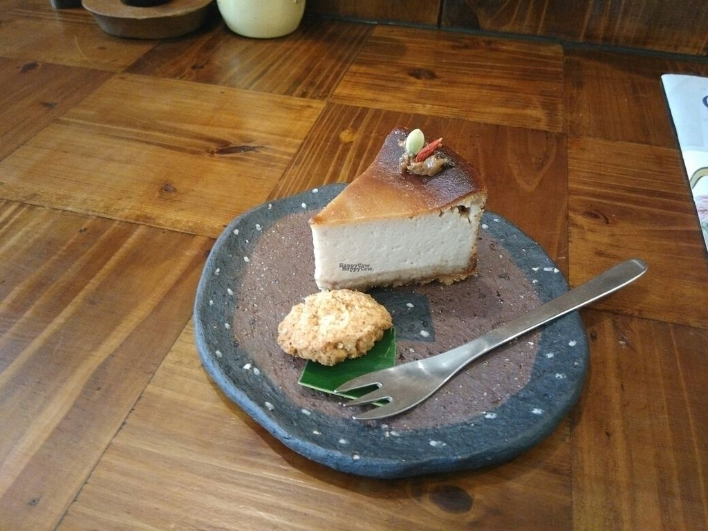 "Photo of Mana  by <a href=""/members/profile/thies"">thies</a> <br/>vegan cheese cake <br/> October 23, 2016  - <a href='/contact/abuse/image/81469/183800'>Report</a>"